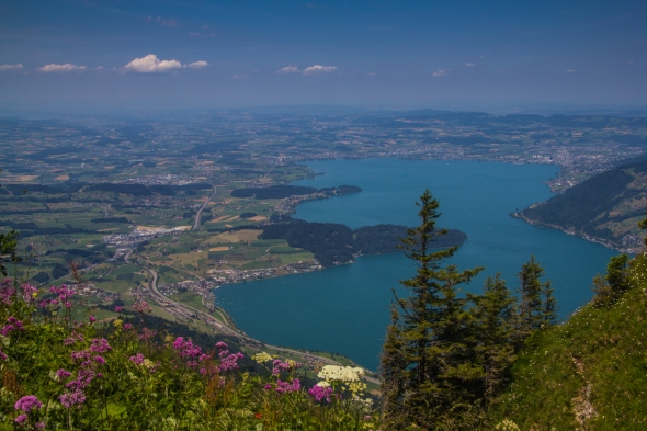 Lake Lucerne from Mt. Rigi